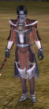Vail Male Morcelle Armor