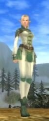 Elf Female Cotton Armor