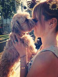 Bella-thorne-with-her-puppy