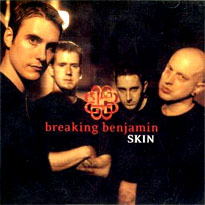 Breaking benjamin skin