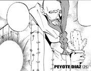 Peyotebeard