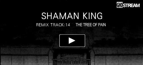 Remix Track 14
