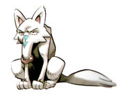 Silver Tail
