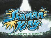 Shaman King Anime 2