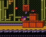 Shantae (USA) 432