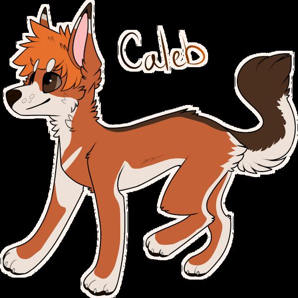 Caleb2