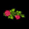 170x170 rose3