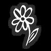 170x170 flower m