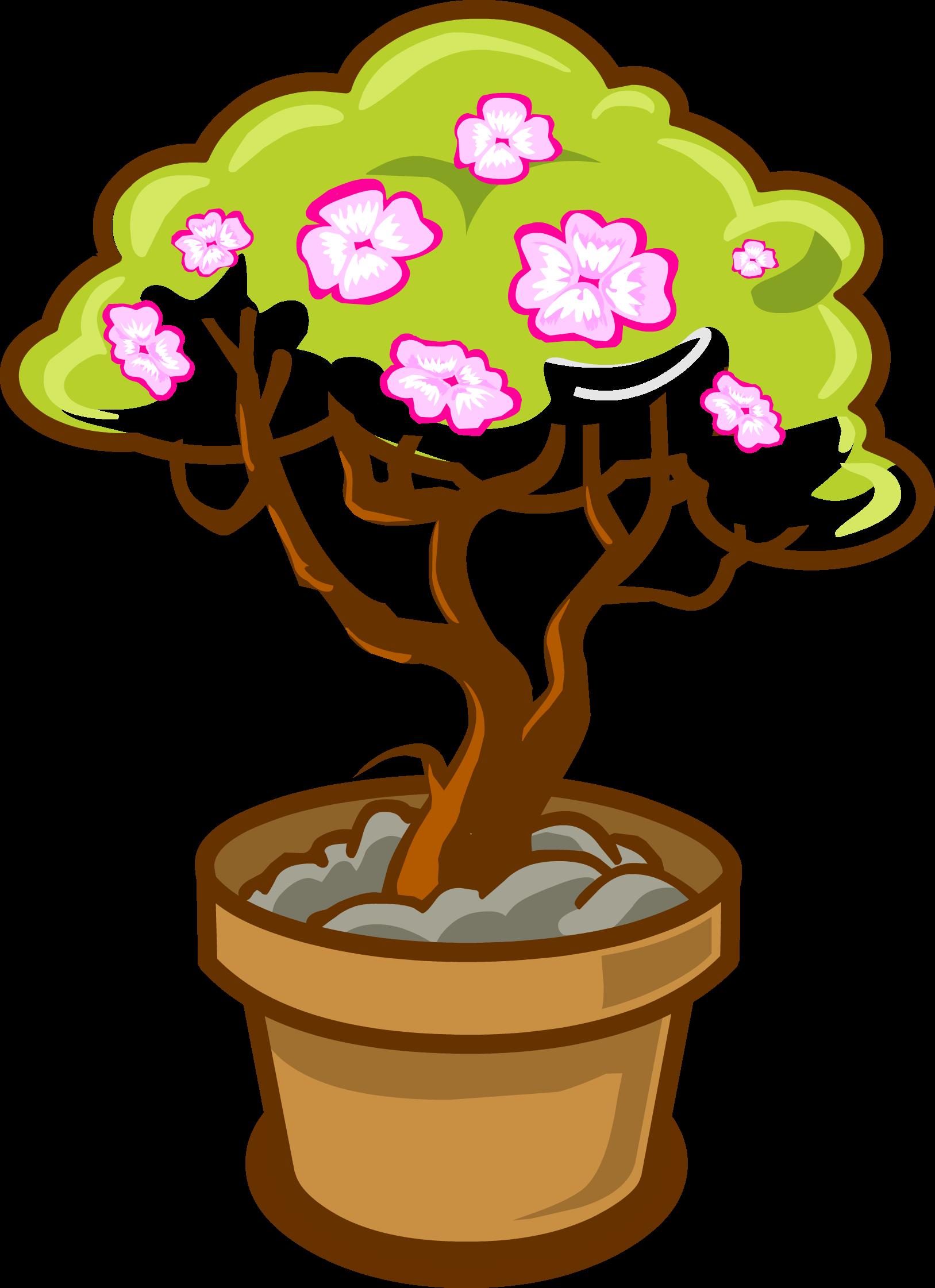 Цветущая сакура | Шарарам вики | FANDOM powered by Wikia  Цветущая Сакура Png