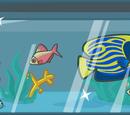 Собери рыбок