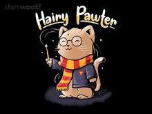 Shary Potter prototype