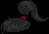 Чёрный хвостик