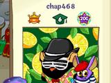 Chap468