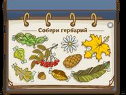 Собери гербарий