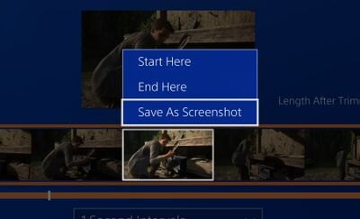SaveAsScreenshot2