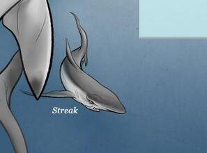 Streak