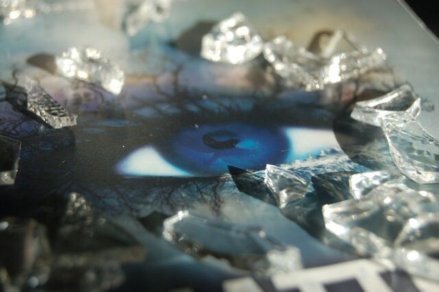 File:Shatter Me Photography - Photo 1.jpg
