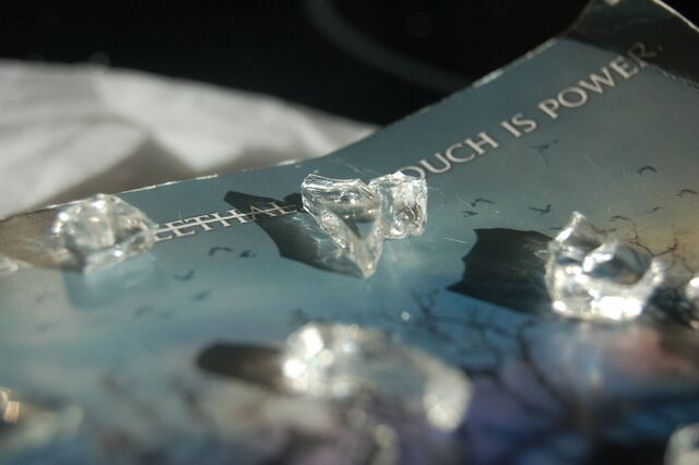File:Shatter Me Photography - Photo 3.jpg