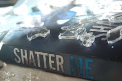 Shatter Me Photography - Photo 2