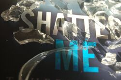 Shatter Me Photography - Photo 5