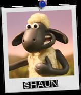 Shaun card