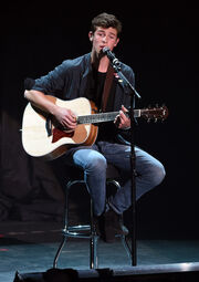 ShawnPerforming
