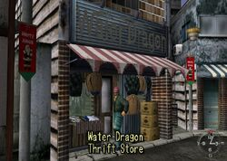 Shenmue store-waterdragon-thrift