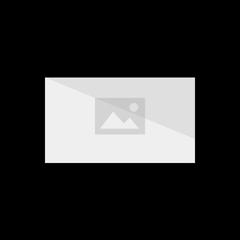 Yamcha i Kuririn atakują gigantyczną rybę
