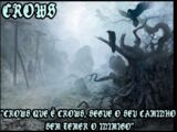 Clans/Clan CROWS