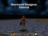 Sherwood Dungeon Tutorial