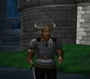 Viking (playable class)