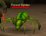 Forest Spider
