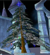 Winter tree sherwood castle