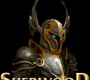 Sherwood Dungeon (mobile)