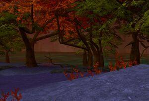 Lost Lagoon2