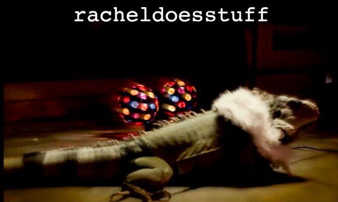Racheldoesstuff