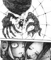 Arachne frisst Medusas Geist