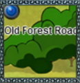 OldForestRoadThumb.png