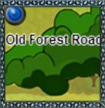 OldForestRoadThumb