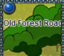 Old Forest Road