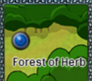 Forest of Herb