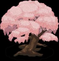 Sakura Tree 4