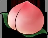 Oversized Peach