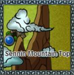 Sennin Mountain Top
