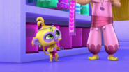 Tala Shimmer and Shine DP