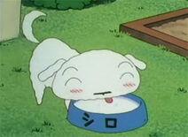 Shin chan character shiro