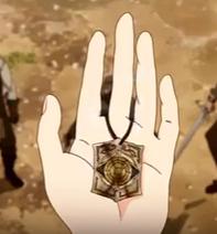 Amira's compass 1