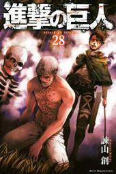 Volumen 28