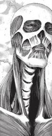 Cara de Armin como el Titan Colosal