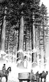 Zeke es llevado al Bosque de los Arboles Gigantes